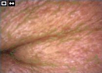 16 діагностика 03